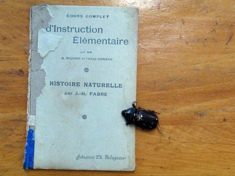 Livre d'histoire naturelle